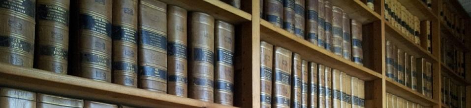 La bibliothèque de la Société géologique de France, fondée comme elle en 1830, est aujourd'hui une des plus importantes bibliothèques de France dans le domaine des sciences de la Terre. Elle se trouve au siège de la société, 77 rue Claude Bernard, 75005 Paris.
